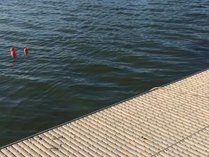 Roeiboei in het water